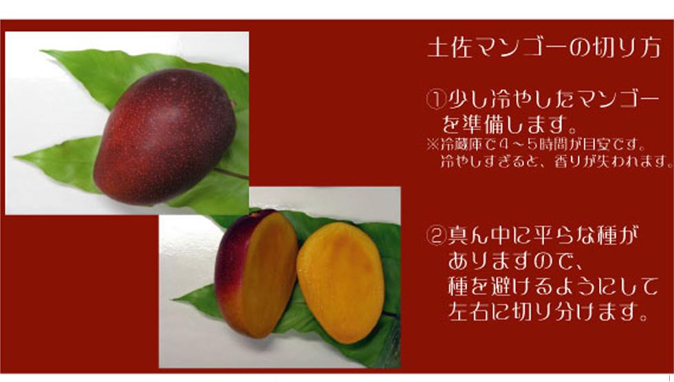 土佐マンゴー 切り方1