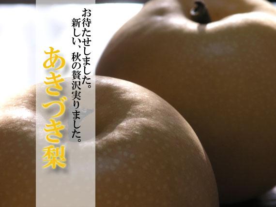 土佐 秋月(あきづき)梨